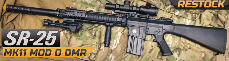 Airsoft SR25 AEGs Magazines And Scopes